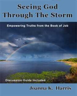 Seeing God Through The Storm: Empowering Truths From The Book Of Job eBook